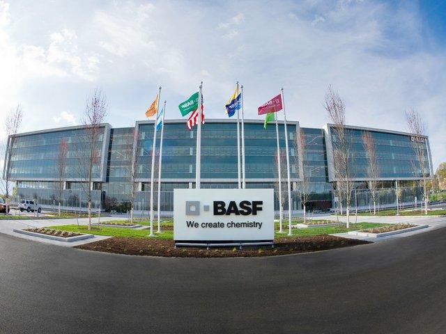 BASF3.jpg