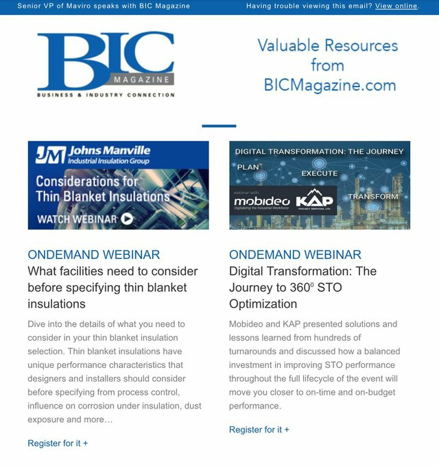 newsletter section preview