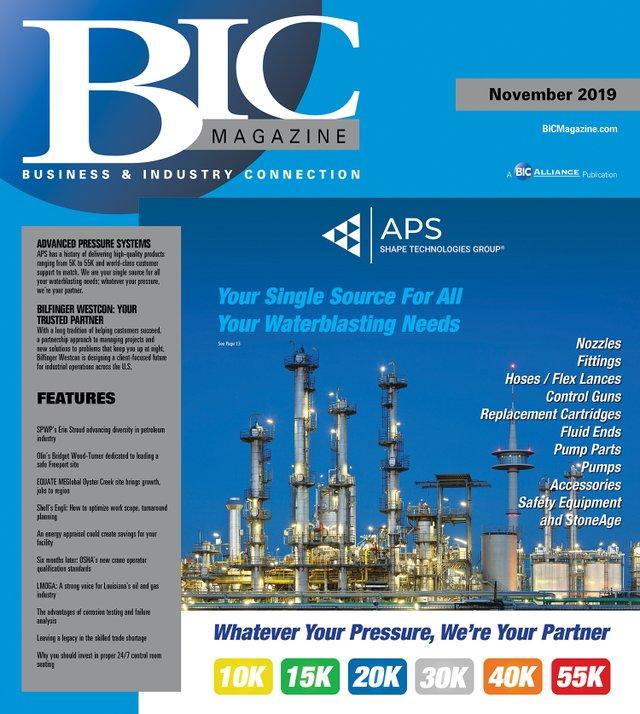 BIC Nov 2019 front cover.jpg