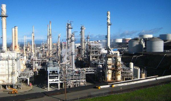 limetree-oil-refinery.jpeg