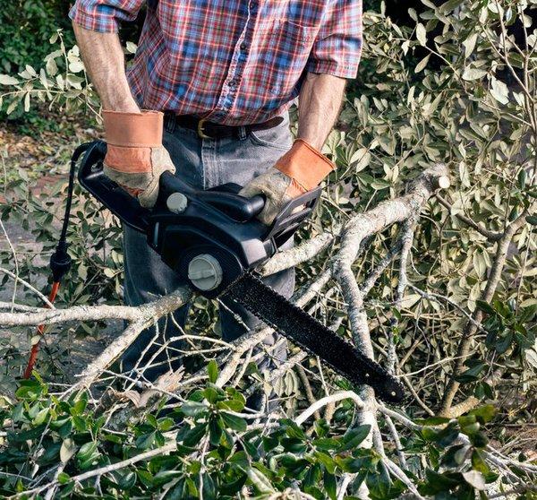 hurricane cleanup.jpg