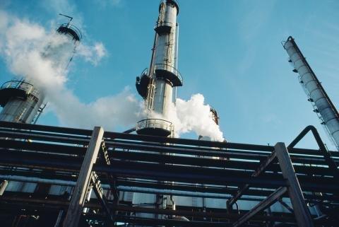 PVC plant.jpg
