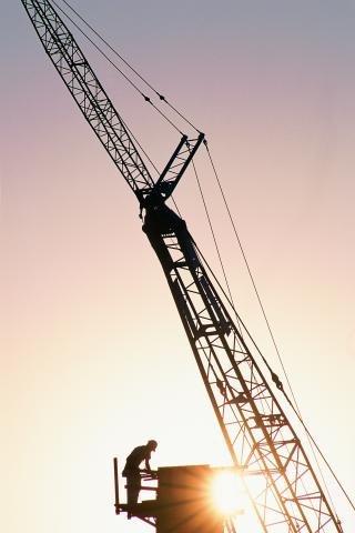 Crane 2.JPG