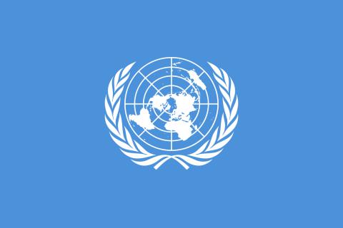 UN flag.png