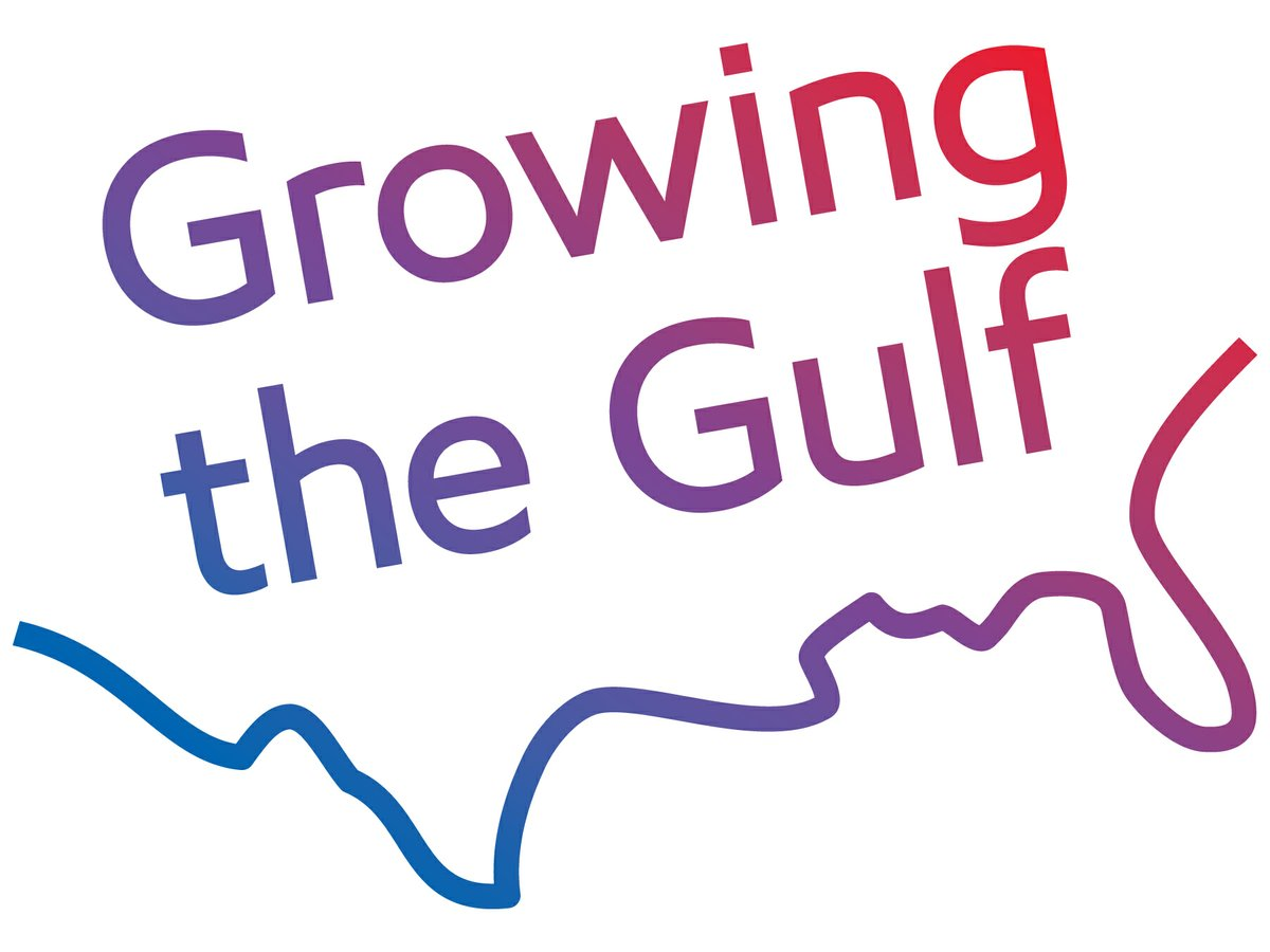 ExxonMobil, SABIC to proceed with Gulf Coast growth ventures